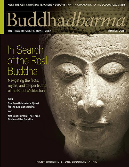 buddhadharma-winter-2015