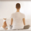 Stillness in Motion - Online Retreat